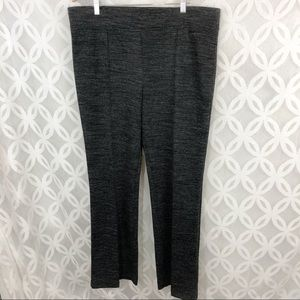 Ann Taylor LOFT Pull on Pants NWT